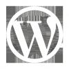 Outil de développement Wordpress